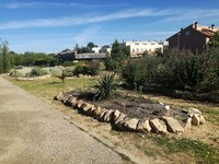 Ampliada la rocalla macaronèsica amb 35 m2 addicionals a l'Arborètum