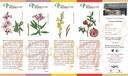 El Jardí Botànic-Arborètum de Lleida edita punts de llibre col·leccionables