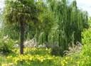 L'Arborètum posa en marxa un programa de Gestió Integrada de Plagues (GIP)
