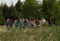 Les aules universitàries per a la gent gran s'interessen per conèixer a fons l'Arborètum