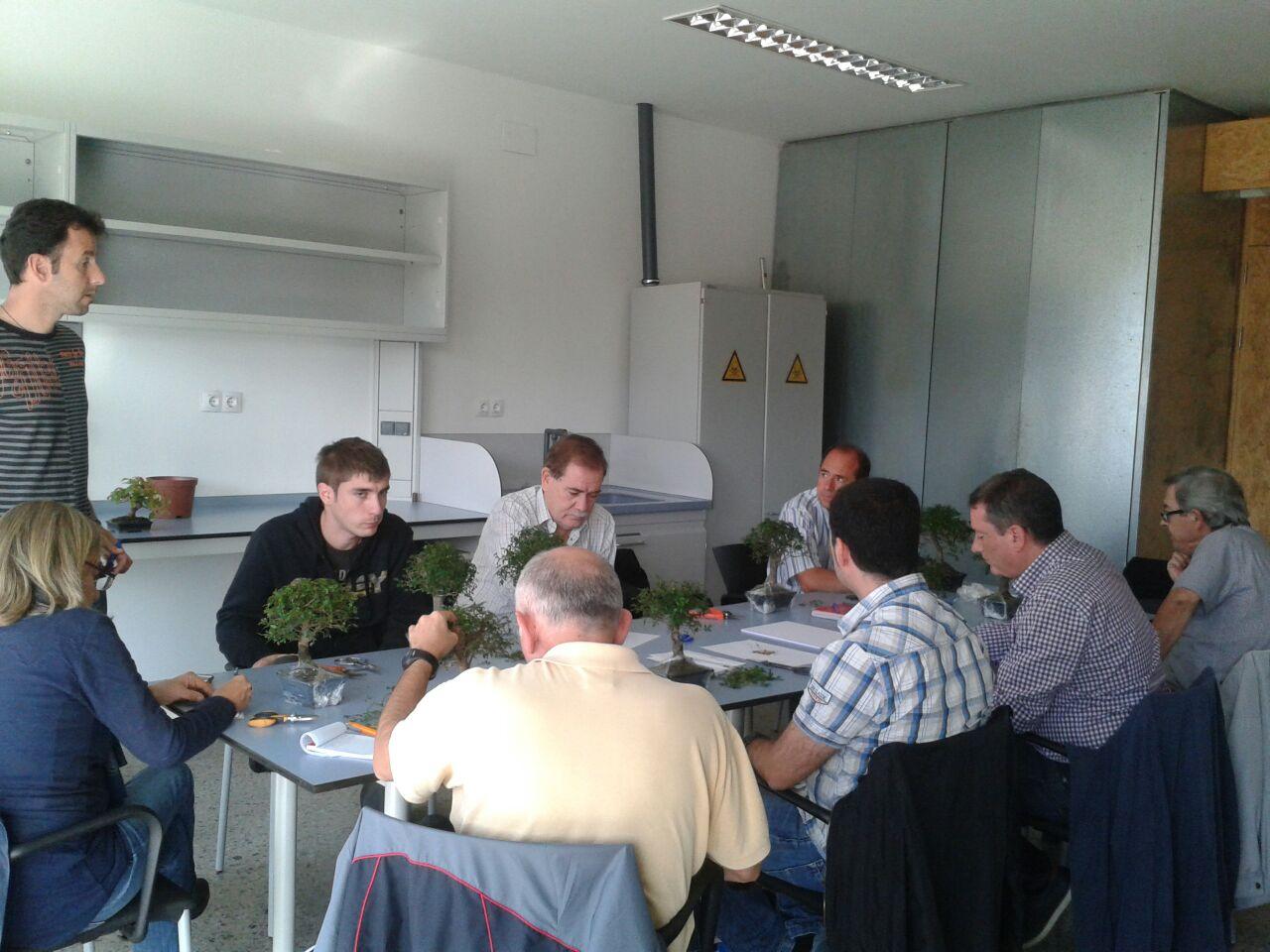 Onze persones participen al taller de bonsais de l'Arborètum de Lleida