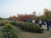 Visita a l'Arborètum en el marc de 'La ciutat amb la mirada de les dones' del programa Activa't al Casal de la Paeria